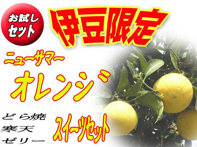 【お試価格1,995円】伊豆限定ニューサマーオレンジスイーツセット